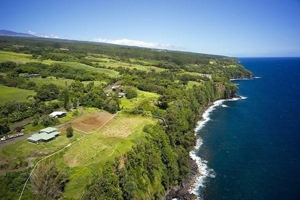 Hwy 19, Ninole, HI 96773 (MLS #621449) :: Elite Pacific Properties