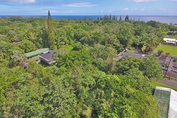 N Opelu St, Pahoa, HI 96778 (MLS #621487) :: Elite Pacific Properties