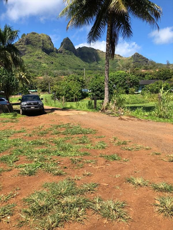 Kuhio Hwy, Anahola, HI 96703 (MLS #621559) :: Aloha Kona Realty, Inc.
