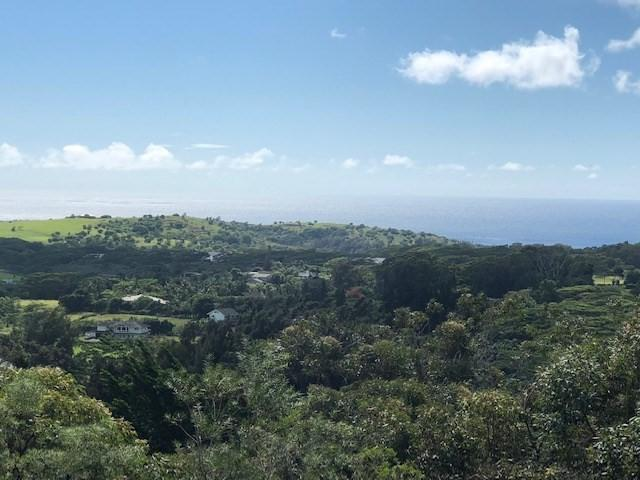 Uha Rd, Lawai, HI 96765 (MLS #622613) :: Elite Pacific Properties