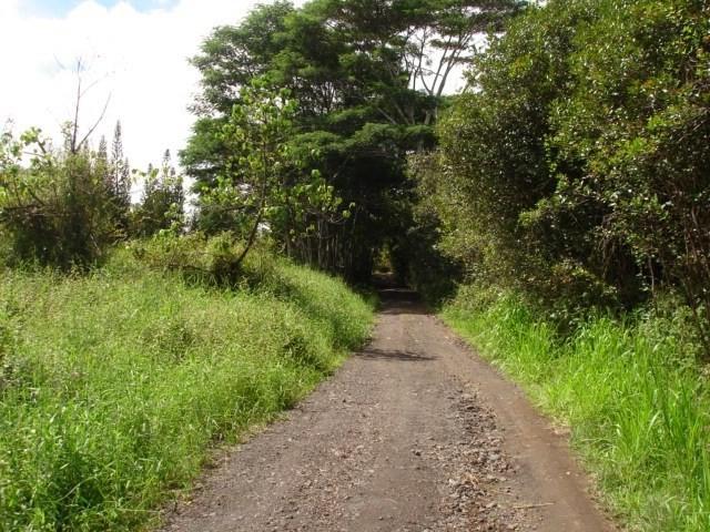 Address Not Published, Kurtistown, HI 96760 (MLS #622638) :: Aloha Kona Realty, Inc.