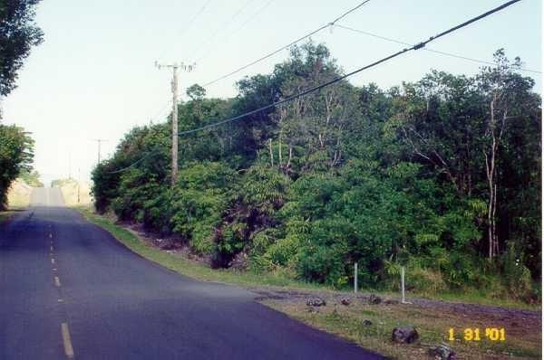 N Kulani Rd, Mountain View, HI 96771 (MLS #622640) :: Aloha Kona Realty, Inc.