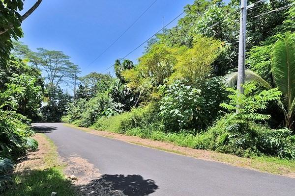 15-2677 N Opelu St, Pahoa, HI 96778 (MLS #622717) :: Oceanfront Sotheby's International Realty