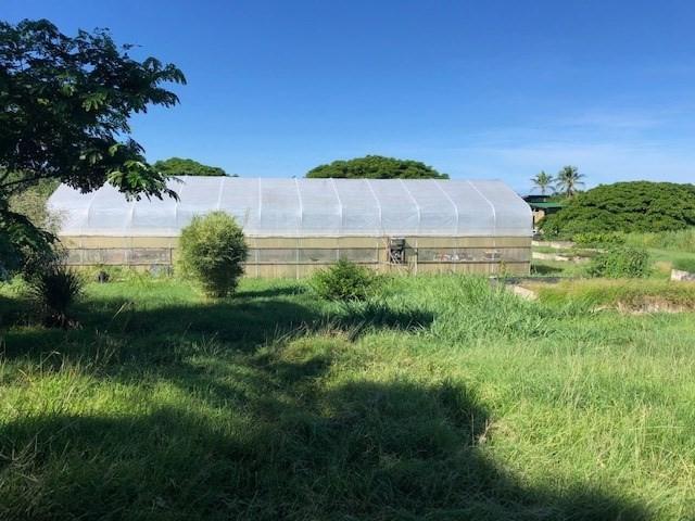 75-5302 Mamalahoa Hwy, Holualoa, HI 96725 (MLS #622768) :: Aloha Kona Realty, Inc.