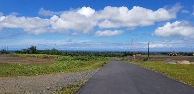 Pulelehua Pl, Hilo, HI 96720 (MLS #623047) :: Elite Pacific Properties