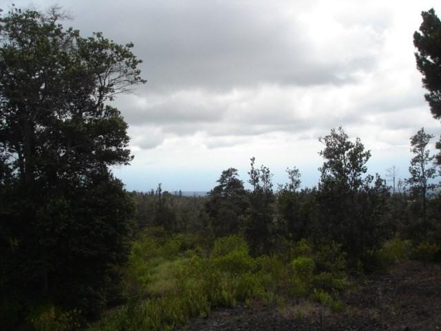 Palm Pkwy, Ocean View, HI 96737 (MLS #623114) :: Aloha Kona Realty, Inc.