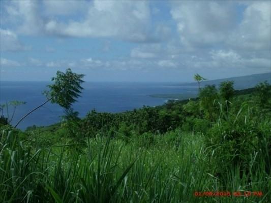 87-3395 Hawaii Belt Rd, Captain Cook, HI 96704 (MLS #623344) :: Team Lally