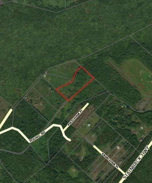 Off Young Rd, Hilo, HI 96720 (MLS #624064) :: Elite Pacific Properties