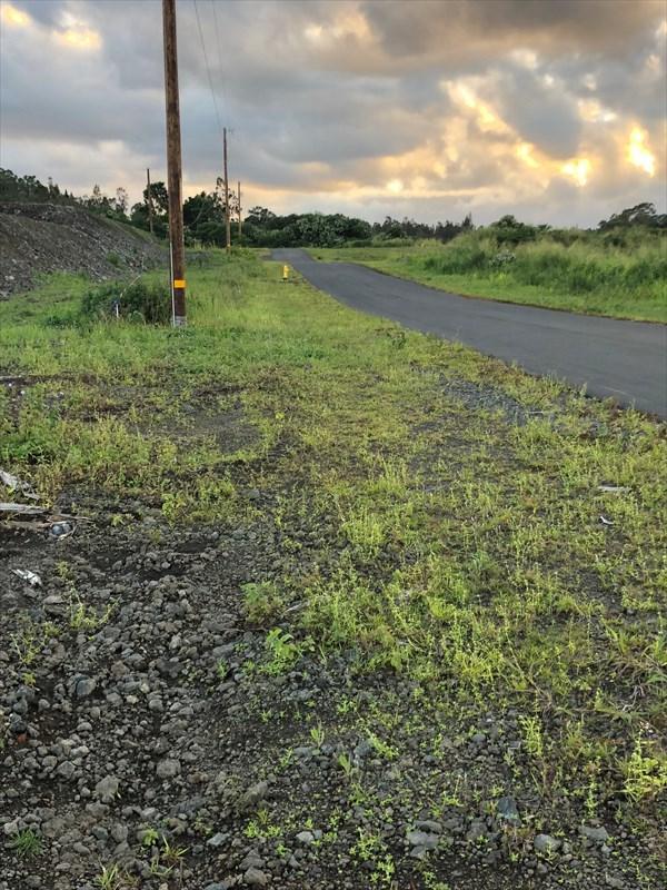 Pulelehua Place, Hilo, HI 96720 (MLS #624081) :: Elite Pacific Properties