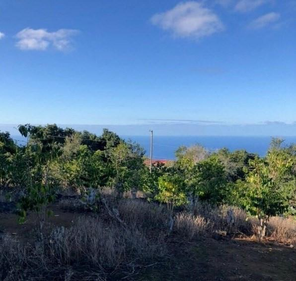 Address Not Published, Captain Cook, HI 96704 (MLS #624097) :: Aloha Kona Realty, Inc.