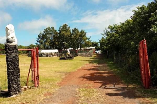 94-2066 South Point Rd, Naalehu, HI 96772 (MLS #624103) :: Song Real Estate Team/Keller Williams Realty Kauai