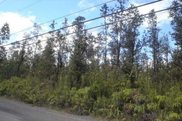 Road 1 (Uhini Ana), Mountain View, HI 96771 (MLS #624111) :: Elite Pacific Properties
