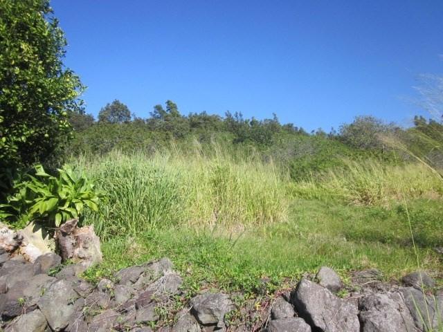 94-7000 Mamalahoa Hwy, Naalehu, HI 96772 (MLS #624518) :: Aloha Kona Realty, Inc.