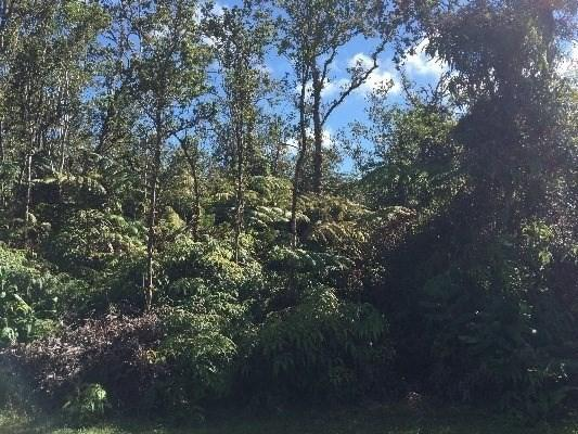 Alaula St, Volcano, HI 96785 (MLS #624543) :: Elite Pacific Properties