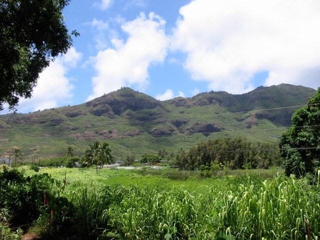 https://bt-photos.global.ssl.fastly.net/hawaii/orig_boomver_1_624548-2.jpg