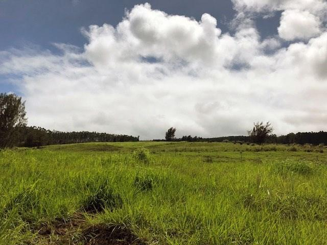 Address Not Published, Paauilo, HI 96776 (MLS #624596) :: Oceanfront Sotheby's International Realty