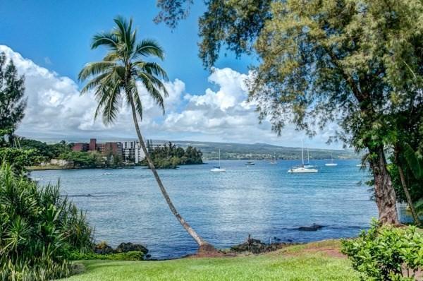 355 Kalanianaole St, Hilo, HI 96720 (MLS #624662) :: Elite Pacific Properties