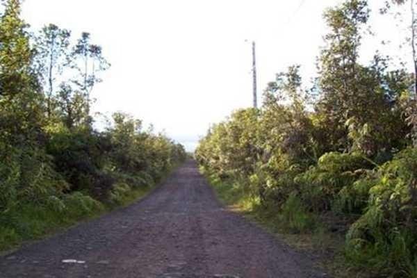 Road M, Volcano, HI 96785 (MLS #624757) :: Oceanfront Sotheby's International Realty