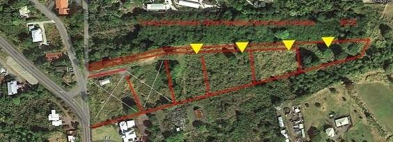 79-7155 Huliau Pl, Holualoa, HI 96725 (MLS #624819) :: Steven Moody