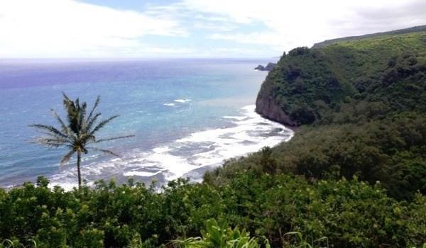 54-2259 Kynnersley Rd, Kapaau, HI 96755 (MLS #624973) :: Song Real Estate Team/Keller Williams Realty Kauai