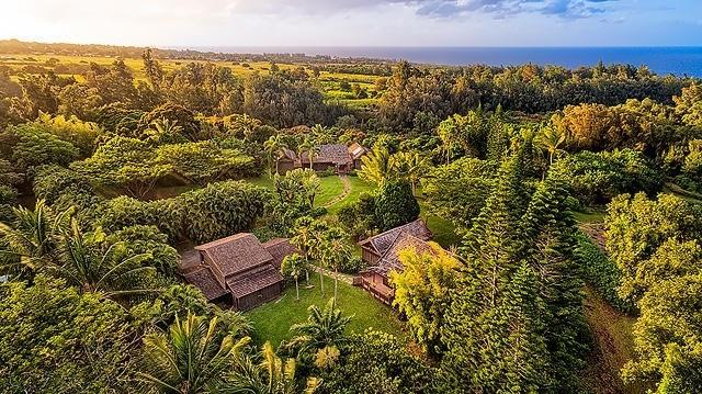 55-450 Stone Crusher Rd, Hawi, HI 96719 (MLS #624979) :: Elite Pacific Properties