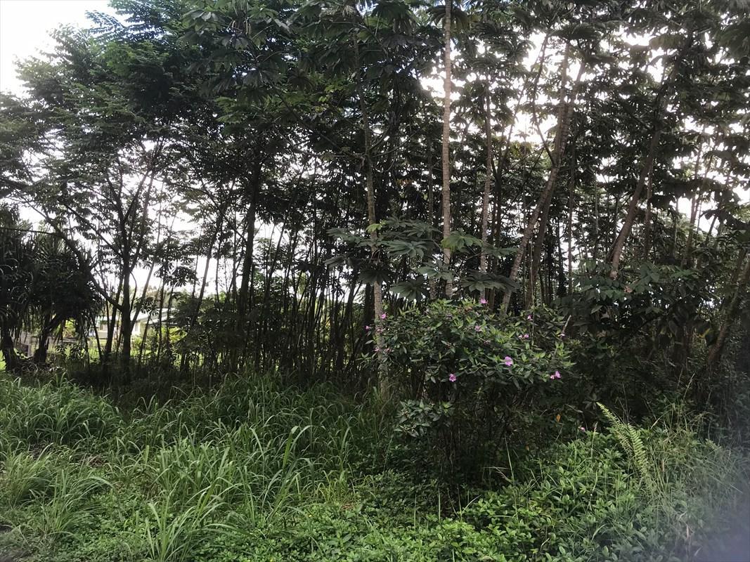 https://bt-photos.global.ssl.fastly.net/hawaii/orig_boomver_1_625019-2.jpg