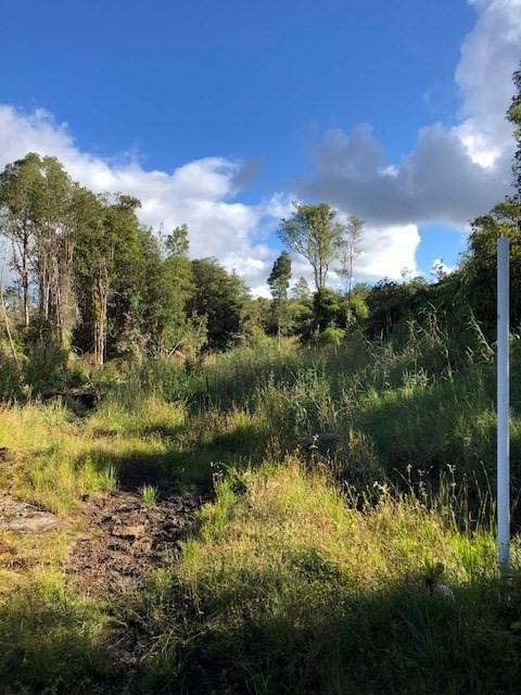 Ihope Rd, Mountain View, HI 96771 (MLS #625057) :: Aloha Kona Realty, Inc.