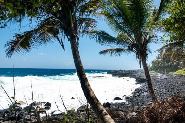 12-7789 Kalapana Kapoho Beach Rd, Pahoa, HI 96778 (MLS #625276) :: Elite Pacific Properties