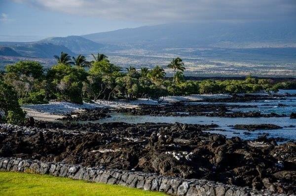Naupaka Kai Pl, Waikoloa, HI 96738 (MLS #625335) :: Elite Pacific Properties