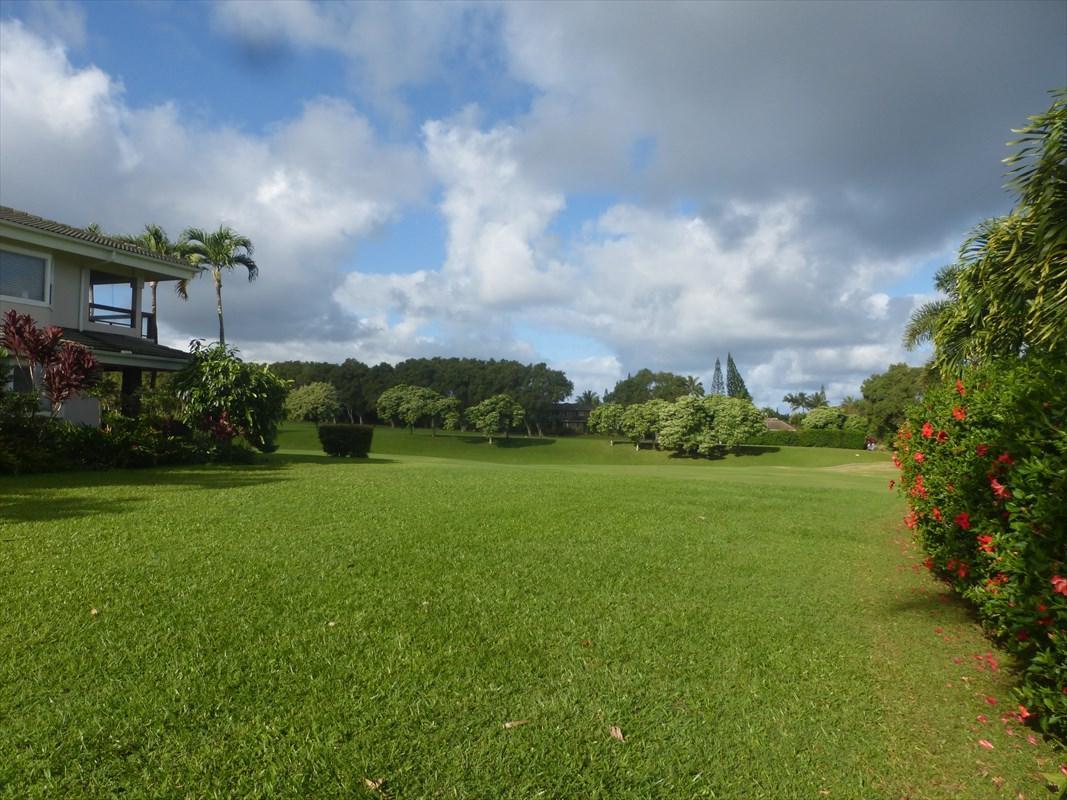 https://bt-photos.global.ssl.fastly.net/hawaii/orig_boomver_1_625468-2.jpg