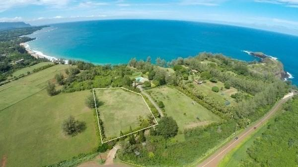 3700 Kilauea Rd, Kilauea, HI 96754 (MLS #625515) :: Elite Pacific Properties