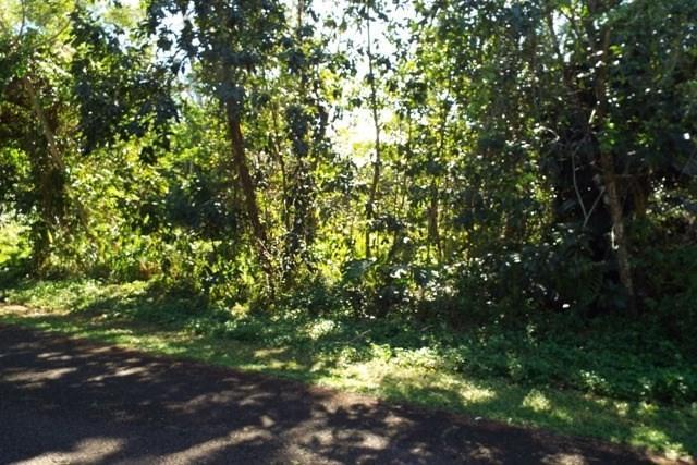 N Kumu St, Pahoa, HI 96778 (MLS #625531) :: Elite Pacific Properties