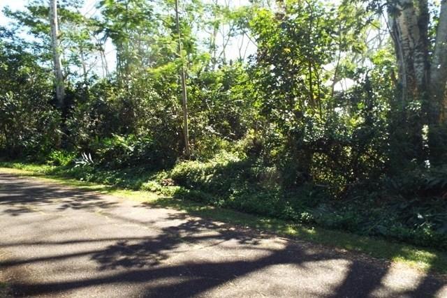 N Kumu St, Pahoa, HI 96778 (MLS #625534) :: Elite Pacific Properties