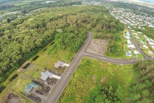 1350 Haleloke St, Hilo, HI 96720 (MLS #625572) :: Aloha Kona Realty, Inc.