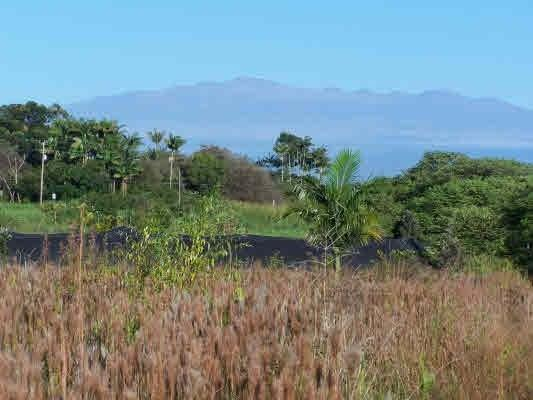 Volcano Rd, Kurtistown, HI 96760 (MLS #625614) :: Elite Pacific Properties