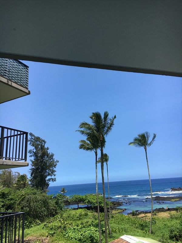 1911 Kalanianaole, Hilo, HI 96720 (MLS #625905) :: Song Real Estate Team/Keller Williams Realty Kauai