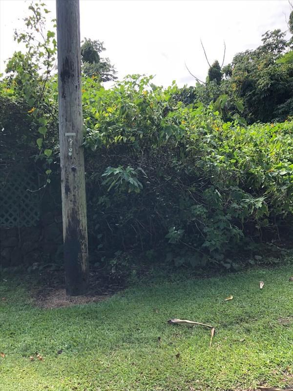15-2792 S Papai St, Pahoa, HI 96778 (MLS #626508) :: Elite Pacific Properties