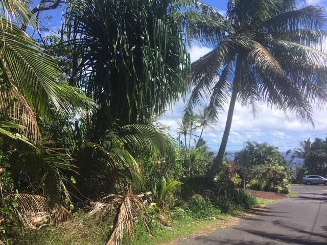 12-404 Oleole St, Pahoa, HI 96778 (MLS #626527) :: Aloha Kona Realty, Inc.