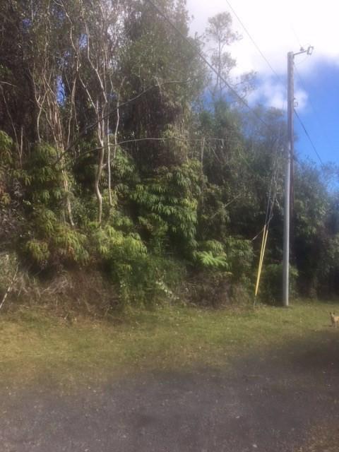 Waikiki St, Mountain View, HI 96771 (MLS #626572) :: Aloha Kona Realty, Inc.