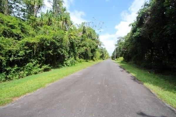 S Manini St, Pahoa, HI 96778 (MLS #626720) :: Aloha Kona Realty, Inc.