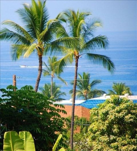 75-5865 Walua Rd, Kailua-Kona, HI 96740 (MLS #626791) :: Elite Pacific Properties