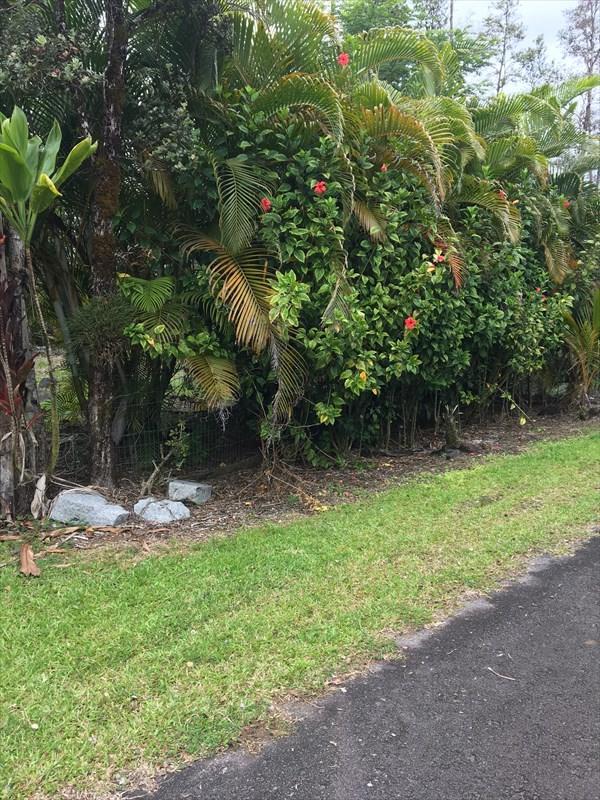 16-454 Brookover St, Pahoa, HI 96760 (MLS #626929) :: Aloha Kona Realty, Inc.