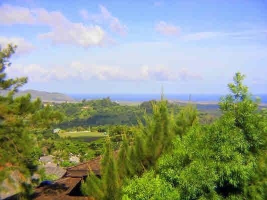 4287 Kai Ikena Dr, Kalaheo, HI 96741 (MLS #627076) :: Kauai Exclusive Realty