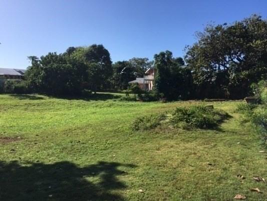 402 Pua Rd, Kapaa, HI 96746 (MLS #627115) :: Kauai Exclusive Realty