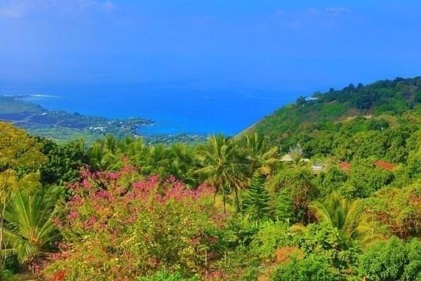 82-5981 Wakida Dr, Captain Cook, HI 96704 (MLS #627273) :: Elite Pacific Properties