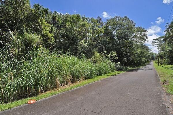 S Nenue St, Pahoa, HI 96778 (MLS #627641) :: Elite Pacific Properties