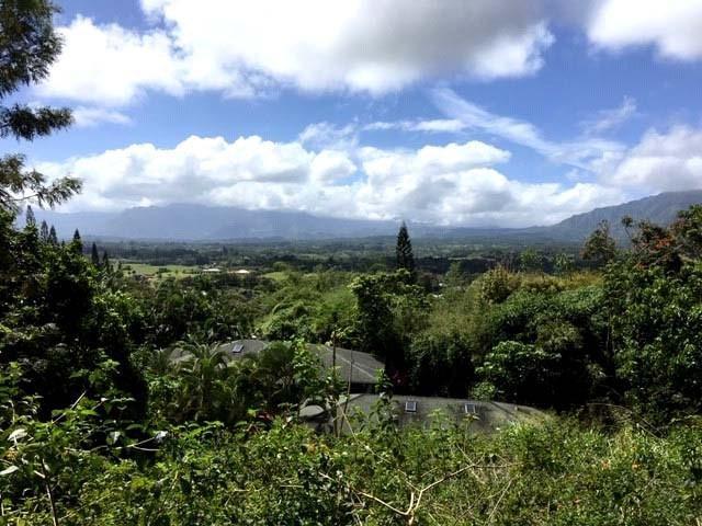 1328 Kiowai Pl, Kapaa, HI 96746 (MLS #627677) :: Kauai Exclusive Realty