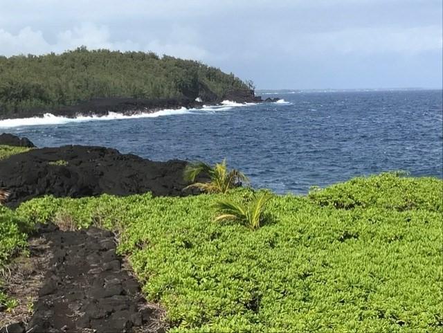 Government Beach Rd, Pahoa, HI 96778 (MLS #627745) :: Aloha Kona Realty, Inc.