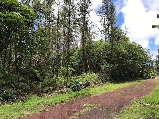 Kapiolani Street, Pahoa, HI 96778 (MLS #627776) :: Aloha Kona Realty, Inc.