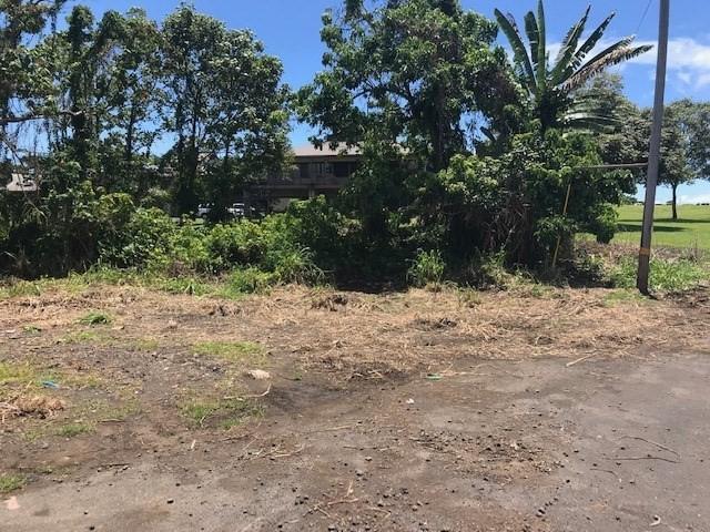 Kekuanaoa Street, Hilo, HI 96720 (MLS #627919) :: Song Real Estate Team | LUVA Real Estate